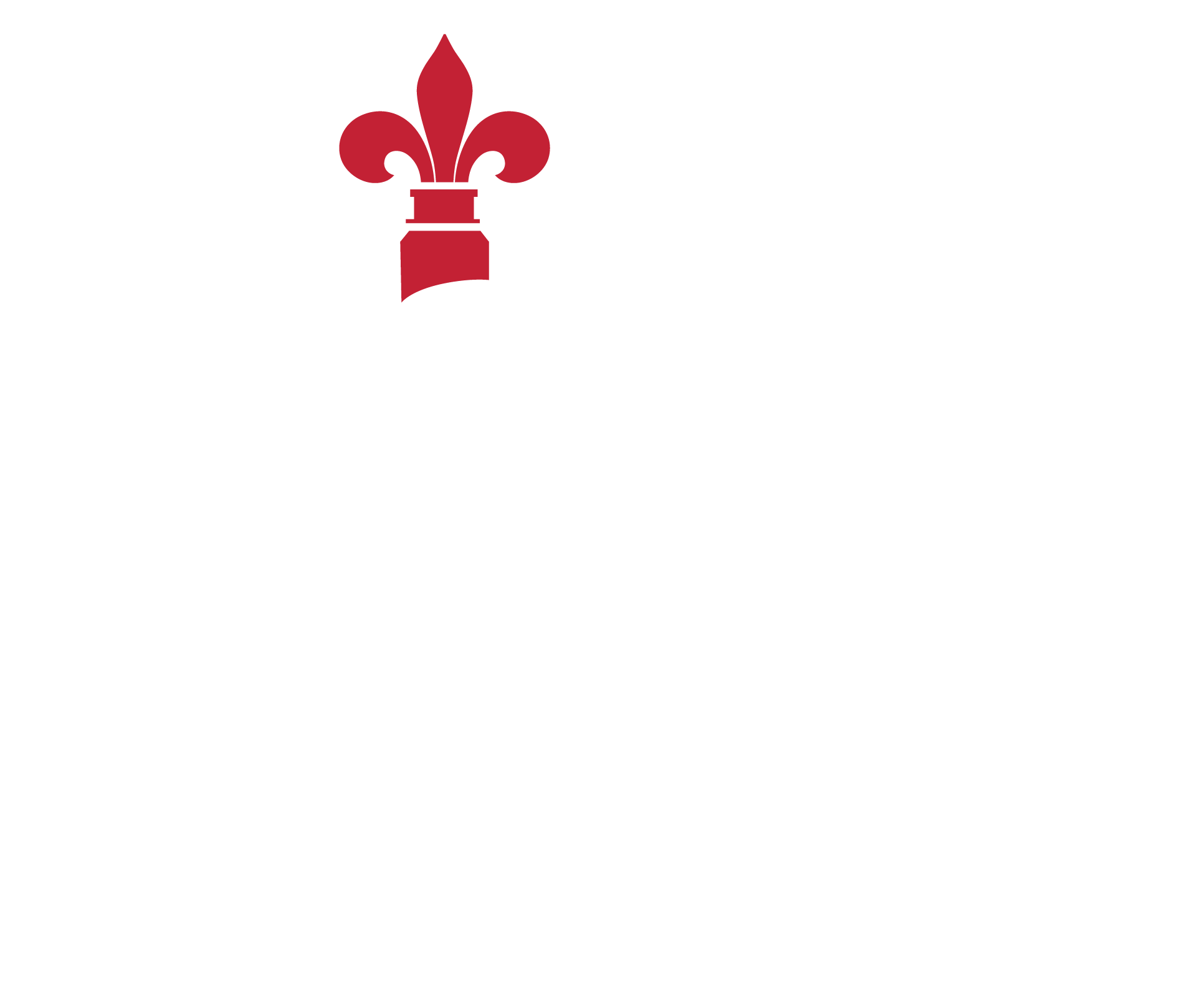 City Bank Logo V Inverse